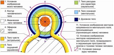 Можно ли избавиться от гипертонии при массаже точек для снижения артериального давления?,Техника воздействия на активные точки