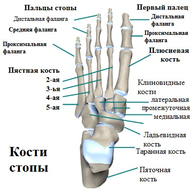 6 причин боли в суставе большого пальца ноги