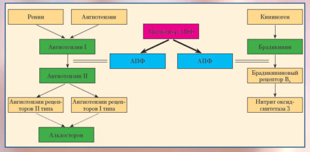 Инструкция по применению Каптопреса от давления, показания, противопоказания, механизм действия