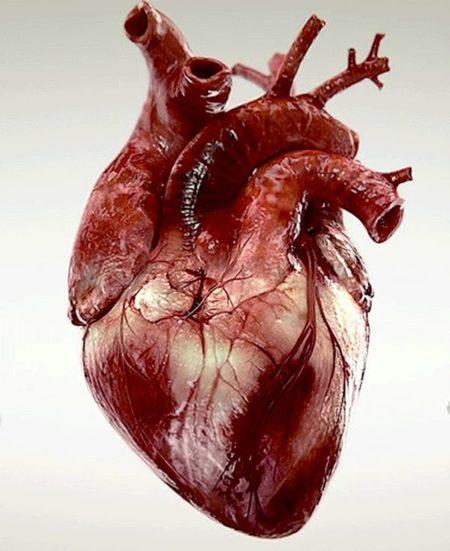 Что делать, если артериальное давление выше 220 на 120: методы оказания первой помощи, симптомы гипертонического криза и виды препаратов