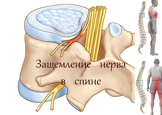 Мануальная терапия позвоночника 6 показаний к проведению. Что это такое?