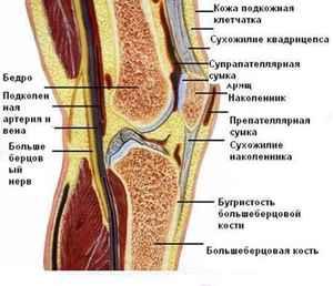 Как лечить колено народными способами