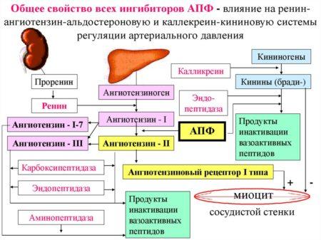 Несколько причин высокого артериального давления у мужчин, симптоматика, методы лечения, профилактики и возможные осложнения