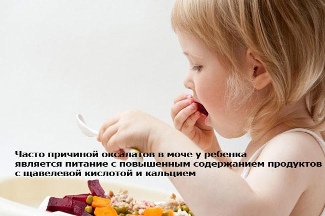 Причины оксалатов в моче у ребенка