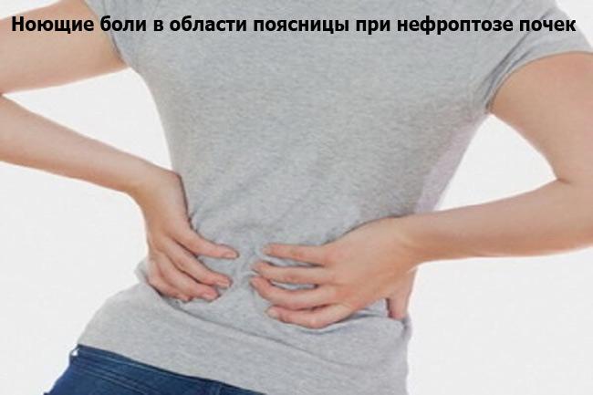 Симптомы нефроптоза почек