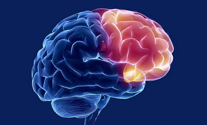 Препарат помогает наладить кровообращение в мозге.
