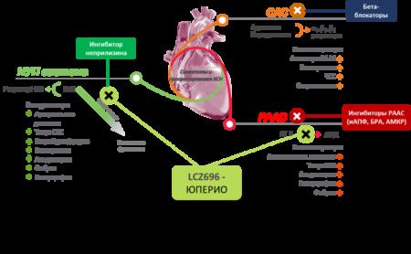 Что делать при артериальном давлении 190 на 100, методы терапии, симптомы, осложнения и причины развития криза