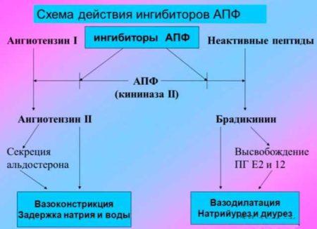Инструкция по применению Энапа, при каком давлении нужно начинать терапию при гипертонии