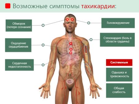 Как понизить показатели пульса, не понижая давление, с чем связано патологическое состояние и как его устранить?