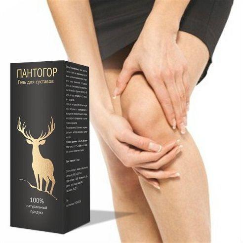Пантогор гель средство для лечения суставов