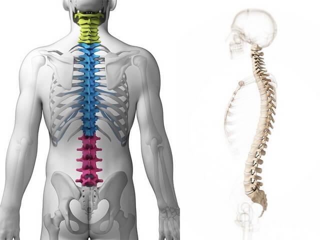 3 симптома гипертрофии желтых связок в спине чем опасно?