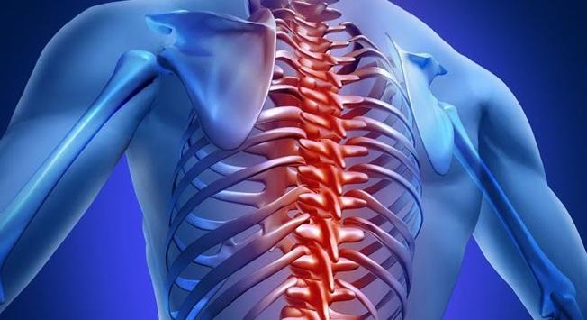20 Самых распространённых болезней спины