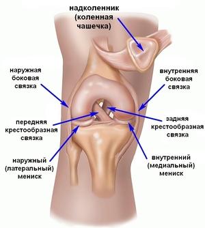 Боли под коленами