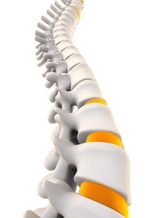 Позвоночный столб очень уязвим что такое дорсопатия и как не столкнуться с ней?