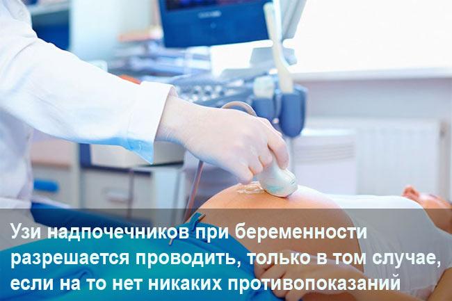 Узи надпочечников при беременности