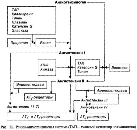 Инструкция по применению Кардосала, показания, противопоказания, взаимодействия, побочные эффекты