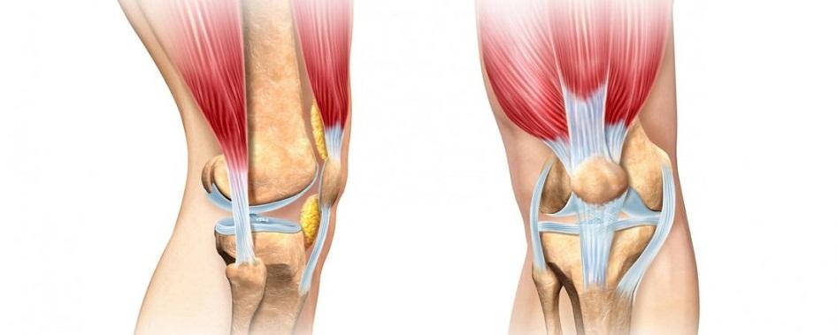 14 причин периартрита коленного сустава. Чем коварно это заболевание?