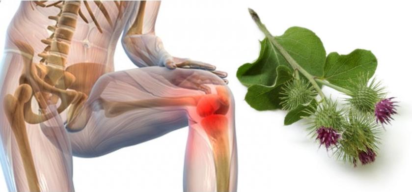 Травмы тазобедренного сустава разновидности и определение степени тяжести