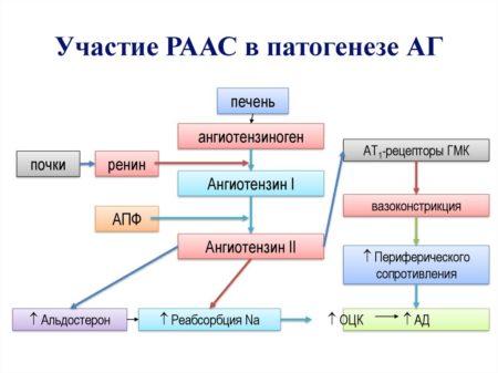 Инструкция по применению Гипосарта, механизм действия, побочные действия, взаимодействия, противопоказания, показания