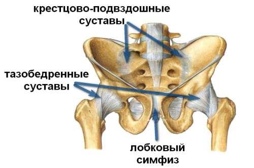 3 опасных последствия ушиба копчика и что делать если вы его повредили?