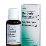 Берберис препарат