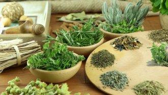 Травы от цистита – что надо знать, когда выбираешь растительный урологический сбор