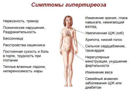 Особенности влияния щитовидной железы на артериальное давление, признаки патологии, методы терапии, причины, профилактика и механизм повышения АД