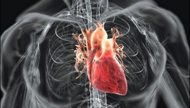 Препарат назначают при ишемической болезни сердца, стенокардии и проч.