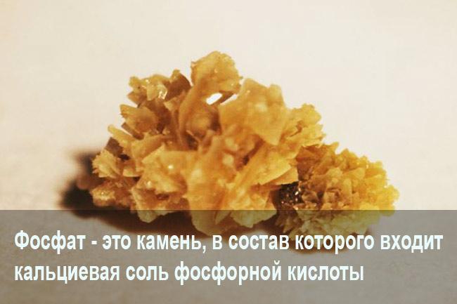 Фосфаты в почках
