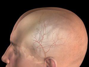 Менингеальная артерия