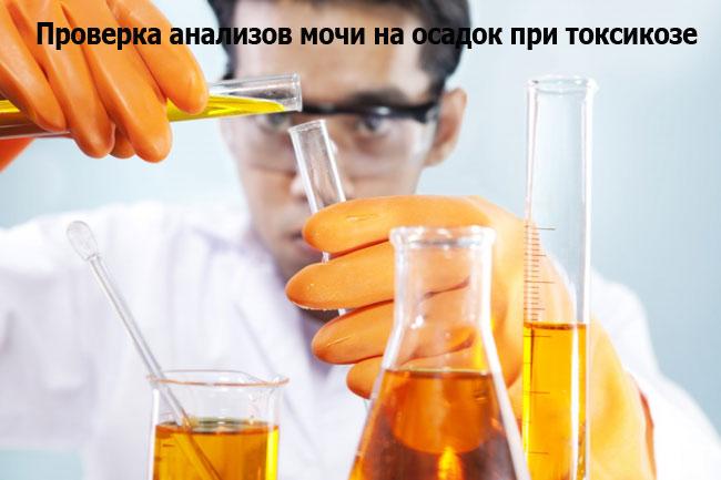 Осадок в моче при токсикозе