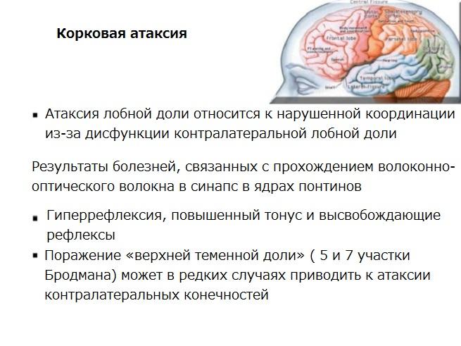 Факты