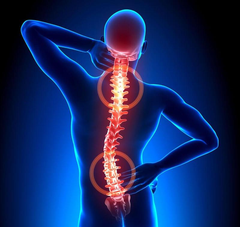 Русское средство для лечения больной спины (лавровый лист)
